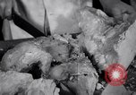 Image of Fat and oil recycling World War 2 Staten Island New York USA, 1945, second 33 stock footage video 65675032525