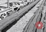 Image of Barty O'Brien Ireland, 1948, second 10 stock footage video 65675032542