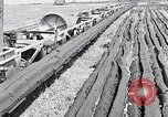 Image of Barty O'Brien Ireland, 1948, second 11 stock footage video 65675032542