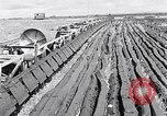 Image of Barty O'Brien Ireland, 1948, second 12 stock footage video 65675032542
