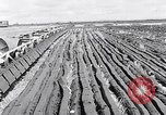 Image of Barty O'Brien Ireland, 1948, second 13 stock footage video 65675032542