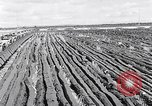 Image of Barty O'Brien Ireland, 1948, second 14 stock footage video 65675032542