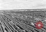 Image of Barty O'Brien Ireland, 1948, second 16 stock footage video 65675032542
