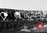 Image of Barty O'Brien Ireland, 1948, second 26 stock footage video 65675032542