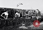Image of Barty O'Brien Ireland, 1948, second 27 stock footage video 65675032542