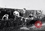 Image of Barty O'Brien Ireland, 1948, second 29 stock footage video 65675032542