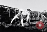 Image of Barty O'Brien Ireland, 1948, second 32 stock footage video 65675032542