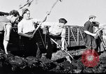Image of Barty O'Brien Ireland, 1948, second 34 stock footage video 65675032542