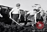 Image of Barty O'Brien Ireland, 1948, second 35 stock footage video 65675032542