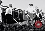 Image of Barty O'Brien Ireland, 1948, second 37 stock footage video 65675032542