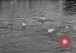 Image of displaced Russians Grimma Germany, 1945, second 46 stock footage video 65675032576