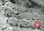 Image of drought United States USA, 1936, second 28 stock footage video 65675032593