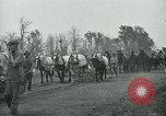 Image of relief work United States USA, 1936, second 39 stock footage video 65675032595