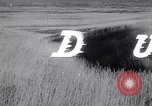 Image of The Dust Bowl United States USA, 1936, second 37 stock footage video 65675032604