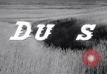 Image of The Dust Bowl United States USA, 1936, second 38 stock footage video 65675032604