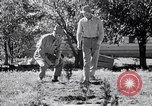 Image of American farmers Dalhart Texas USA, 1960, second 28 stock footage video 65675032610