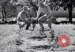 Image of American farmers Dalhart Texas USA, 1960, second 29 stock footage video 65675032610