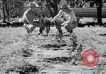 Image of American farmers Dalhart Texas USA, 1960, second 30 stock footage video 65675032610