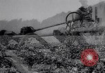 Image of American farmers Dalhart Texas USA, 1960, second 36 stock footage video 65675032610