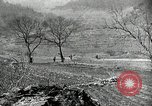 Image of 24th Infantry Division Korea, 1951, second 54 stock footage video 65675032628