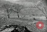 Image of 24th Infantry Division Korea, 1951, second 56 stock footage video 65675032628