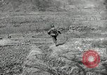 Image of 24th Infantry Division Korea, 1951, second 60 stock footage video 65675032628