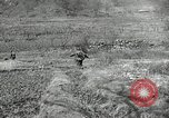 Image of 24th Infantry Division Korea, 1951, second 61 stock footage video 65675032628