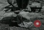 Image of 155 mm Howitzer Seoul Korea, 1951, second 5 stock footage video 65675032645