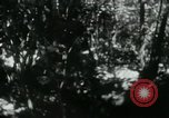 Image of Viet Cong digging trenches Vietnam, 1965, second 5 stock footage video 65675032687