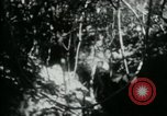Image of Viet Cong digging trenches Vietnam, 1965, second 14 stock footage video 65675032687