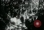 Image of Viet Cong digging trenches Vietnam, 1965, second 17 stock footage video 65675032687