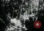 Image of Viet Cong digging trenches Vietnam, 1965, second 18 stock footage video 65675032687