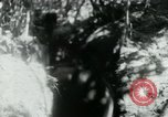 Image of Viet Cong digging trenches Vietnam, 1965, second 23 stock footage video 65675032687