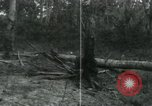 Image of Vietnamese people leaving a damaged Viet Cong camp Vietnam, 1965, second 57 stock footage video 65675032689