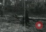 Image of Vietnamese people leaving a damaged Viet Cong camp Vietnam, 1965, second 58 stock footage video 65675032689
