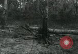 Image of Vietnamese people leaving a damaged Viet Cong camp Vietnam, 1965, second 59 stock footage video 65675032689