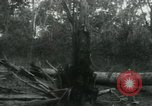 Image of Vietnamese people leaving a damaged Viet Cong camp Vietnam, 1965, second 61 stock footage video 65675032689