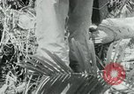 Image of Viet Cong moving supplies in Jungles on bicycles Vietnam, 1967, second 25 stock footage video 65675032692