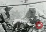 Image of Viet Cong moving supplies in Jungles on bicycles Vietnam, 1967, second 26 stock footage video 65675032692