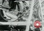 Image of Viet Cong moving supplies in Jungles on bicycles Vietnam, 1967, second 28 stock footage video 65675032692