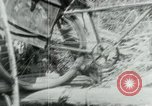 Image of Viet Cong moving supplies in Jungles on bicycles Vietnam, 1967, second 32 stock footage video 65675032692