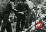 Image of Viet Cong moving supplies in Jungles on bicycles Vietnam, 1967, second 57 stock footage video 65675032692