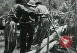 Image of Viet Cong moving supplies in Jungles on bicycles Vietnam, 1967, second 58 stock footage video 65675032692