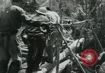 Image of Viet Cong moving supplies in Jungles on bicycles Vietnam, 1967, second 59 stock footage video 65675032692