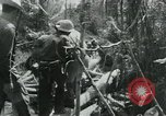 Image of Viet Cong moving supplies in Jungles on bicycles Vietnam, 1967, second 61 stock footage video 65675032692