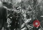 Image of Viet Cong moving supplies in Jungles on bicycles Vietnam, 1967, second 62 stock footage video 65675032692