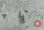 Image of Vietnamese families carrying food and supplies into Viet Cong camp in  Vietnam, 1965, second 48 stock footage video 65675032697