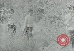 Image of Vietnamese families carrying food and supplies into Viet Cong camp in  Vietnam, 1965, second 56 stock footage video 65675032697