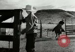 Image of Working activities on a farm and ranch in Texas United States USA, 1943, second 11 stock footage video 65675032776