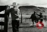 Image of Working activities on a farm and ranch in Texas United States USA, 1943, second 12 stock footage video 65675032776